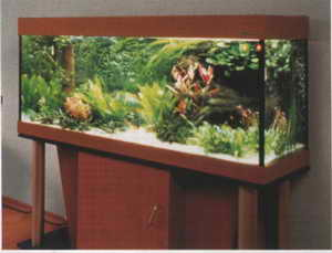 Обустройство аквариума своими руками фото